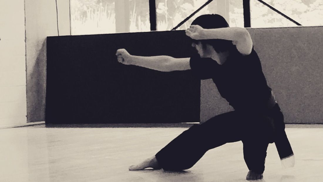 lage poekoelan kung fu standen