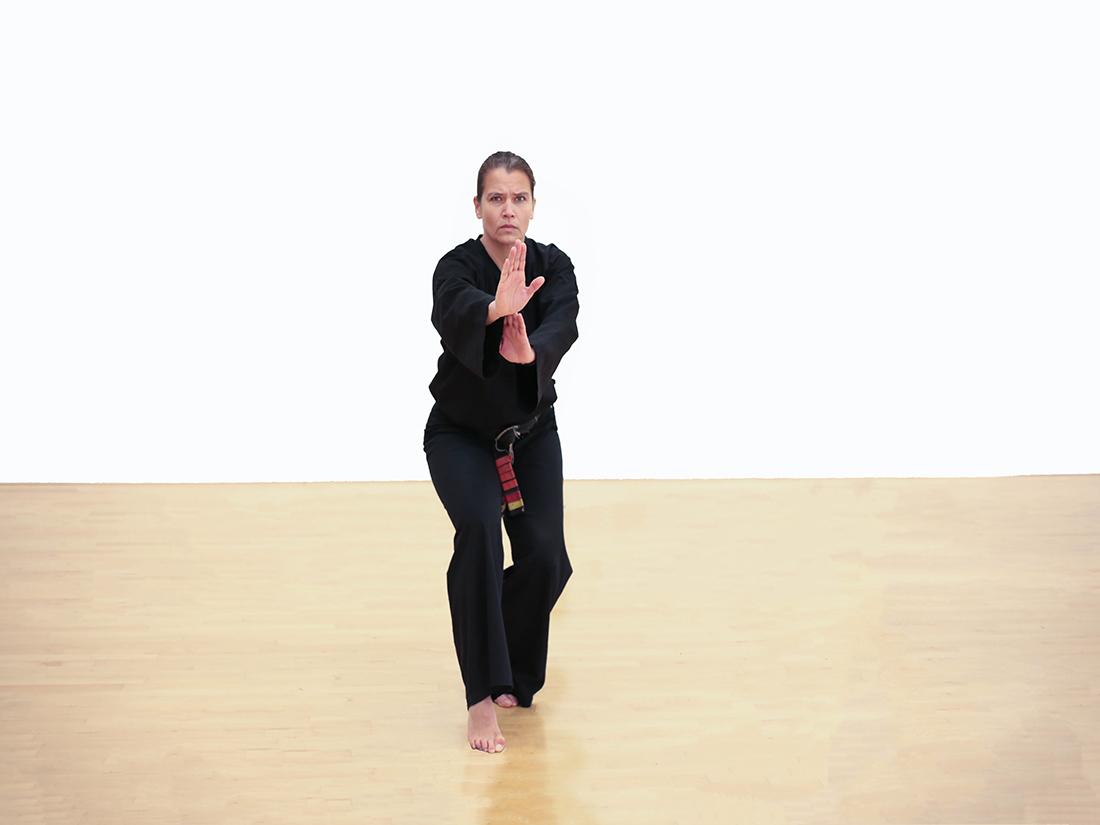 vechthouding poekoelan kung fu