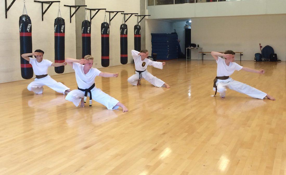 Poekoelan Kung Fu